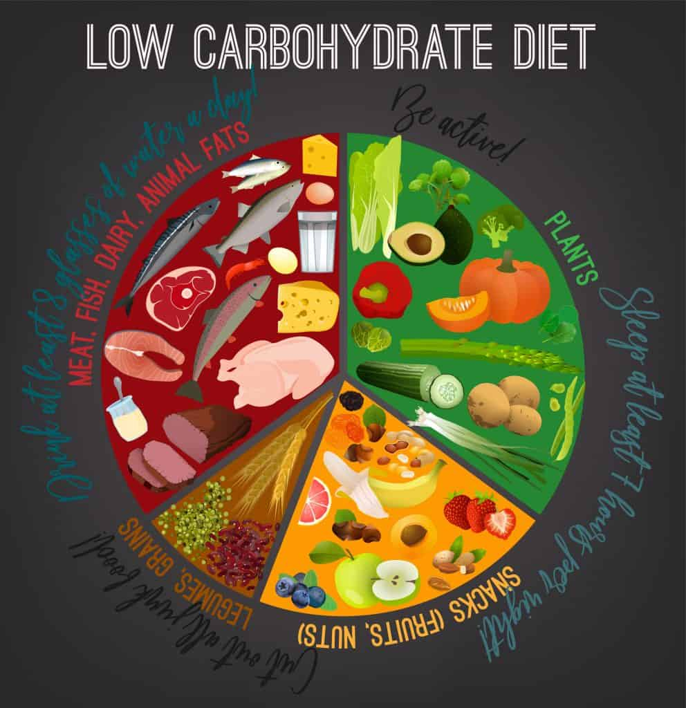 how much protein on low carb diet bodybuilding